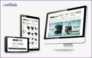Ecommerce website design Windsor, Ontario